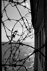 Barbed! (Simon Taylor Local Photographic) Tags: bw barbed wire sea sky