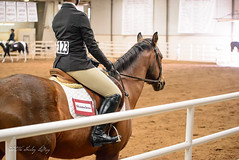 IHSA Zone 7 Competition 2016 (shirley319) Tags: horse texas unitedstates canyon april erica equestrian 2016 d600 horsecompetition ihsa westtexasam zonecompetition noviceflat