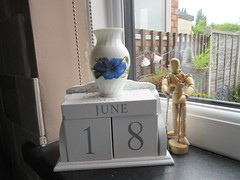Saturday, The day is getting closer IMG_9129 (tomylees) Tags: morning blue summer flower june calendar saturday 18th vase essex perpetual 2016