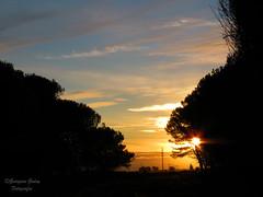 Atardecer de otoo en Claromeco (Gina Rye) Tags: sunset sky contraluz landscape atardecer paisaje