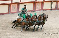 puy du fou (laurek.photography) Tags: horse chars cheval course green vert vende france puy du fou