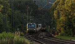 1418_2016_07_08_Baunatal_Guntershausen_BOXX_6193_841_mit_Containerzug_DGS_69261_Hamburg_Waltershof_-_Mnchen_Riem_MRCE_DISPO_6193_614_mit_gem_Gterzug_EZ_51682_N (ruhrpott.sprinter) Tags: ruhrpott sprinter geutschland germany nrw ruhrgebiet gelsenkirchen lokomotive locomotives eisenbahn railroad zug train rail reisezug passenger gter cargo freight fret diesel ellok hessen inselbahnhof guntershausen bebra boxxboxxpress db cantus hebhlbahn mrcedispolok prontorail rbk sbbc spagspitzke txltxlogistik wwwdispolokcom xrail 101 114 115 146 120 51 152 155 182 185 193 427 428429 482 628928 946 makde27001251 es64u2 es64f4 pbz ic re outdoor logo graffiti natur gterwaggon gterwagen
