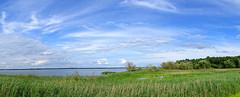 Turawa lake - panorama 2 (radimersky) Tags: turawa lake jezioro turawskie panorama panoramatic landscape krajobraz widok countruside day dzie sunny clouds white biae chmury woda water polska poland niebieskie niebo blue sky opolskie silesia lsk niwki szuwary rushes compact camera cybershot dschx60 sony cloud outdoor sonecznie skyline horyzont 3183x1280