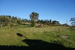 DSC07785 (spacemigas) Tags: field landscape douro monte cabeo