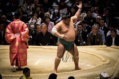 Sumo in Osaka-27 (Rodrigo Ramirez Photography) Tags: japan amazing traditional professional tournament osaka sumo yokozuna ozeki makuuchi hakuho sumotori sumotournament maegashira reikishi harumafuji topdivision