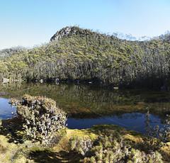 Lake Nicholls