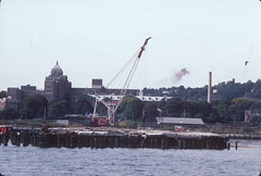 Harbor drift Stapleton Pier 15 (Close-up view) 1983 (NYCEDC) Tags: decay piers pilings statenisland dredging deterioration dredgers nycwaterfront nycedc newyorkcitywaterfront harbordrift edcportstransportation