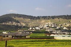 Jala'ad - Balqaa - Jordan (Saeed Nassbeh) Tags: trees green nature countryside village jordan greenery plain