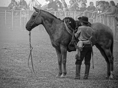 Gaucho (Dibe1970) Tags: wild horses horse argentina caballo caballos folklore cavalo argentinian gaucho gacho cavallos criollos argentinidad