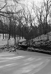 Rockford, Illinois 2015 (sabradoodle) Tags: park winter white snow black cold illinois rockford
