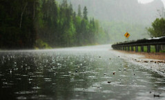 (camille.lebihan18) Tags: eau pluie route qubec goutte gouttes averse