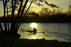 Rio (mggarcas) Tags: trees sunset sun reflection water silhouette sport thames river spring kayak shore rowing berkshire