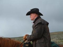 horsedrive2003013