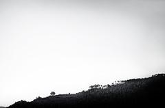 #7988 (UBU ♛) Tags: blackwhite noiretblanc blues biancoenero unamusicaintesta landscapeinblues luciombreepiccolicristalli ©ubu