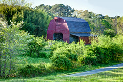 Wine Barn (Dave Reasons) Tags: red barn 1 afternoon unitedstates 26 country alabama sunny 66 101 daytime 40 135 37 53 209 39 204 248 65 38 191 139 136 131 onone 184 113 134 137 193 216 177 253 249 196 208 140 194 247 226 138 176 244 197 269 hartselle photomatix perfecteffects95