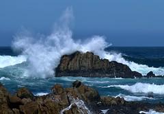 April15PG0080 (Michael T. Morales) Tags: waves pacificgrove ptpinos