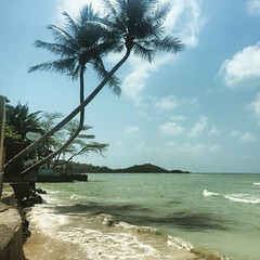 upload (vandra) Tags: costa beach square playa palm squareformat kohsamui alta palmera perpetua cala rakel marea iphoneography instagramapp