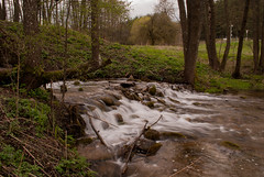 Little waterfall (modestmoze) Tags: street travel blue trees sky plants brown white signs green nature wet water grass yellow metal river outside outdoors grey waterfall moss spring rocks view branches may running hills flowing shrubs lithuania 2016 500px