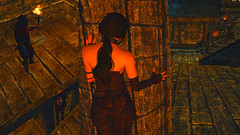 8 (Beth Amphetamines) Tags: city wallpaper black nature against race hair screenshot mod solitude erin guard armor thief ponytail hold holds crimes overhaul skyrim thief4 tembtra asarynn