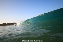 IMG_4215 copy (Aaron Lynton) Tags: beach canon big spl beah makena shorebreak lyntonproductions