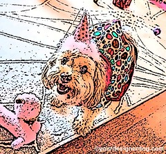 Caturday Art #6 (yourdesignerdog) Tags: birthday party portrait dog pet pets cute art dogs hat smiling digital blog all designer wordpress sadie posts ifttt