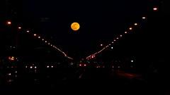 moon (Darek Drapala) Tags: city sky moon color night evening mood cityscape poland polska panasonic warsaw warszawa panasonicg5