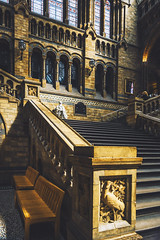 Hintze Hall Stair Case (Laura Racero) Tags: london history museum hall stair natural case hintze nikond810