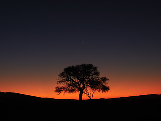 47 Namibia Sesriem