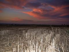 En las puertas del infierno (alfrelopez) Tags: paisaje cielo castilla palencia alfredo alfrelopez atardecer ocaso nikon d3200 sigma 18200