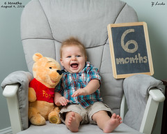 6 Months- August 4, 2016 (zachary.locks) Tags: 6 baby bear bigger chalkboard cy365 growing happiness happy jack monthly months old older pics pooh sitting six smile son winnie zlocks