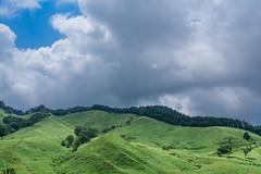 14Tonomine Highland (anglo10) Tags:   japan field