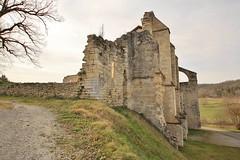 IMG_4170 (Roving_photographer) Tags: france abbey frankreich ruins ruine ruina francia monasterio monastere kloster monastero rovine abbaye abbazia 13thcentury midipyrenees abtei klosterruine léobard