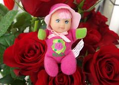 Fofolete Flores - Rosa - 2004 (~Marba~Furtado~) Tags: flowers flores 2004 bonecas estrela rosa collection collector fofolete coleo bonequinha beandoll matchboxdolls