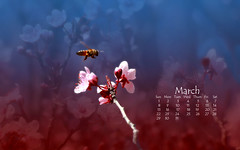 March Buzz (Auntie K) Tags: wallpaper march spring calendar bees blossoms grfxphotographicart