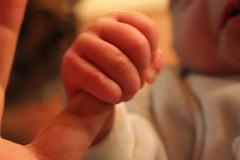 Nephew's hand and uncle's finger. (marco_ask) Tags: hand finger nephew mylove littlefinger zio neonato mesemarzo handnewborn manodineonato