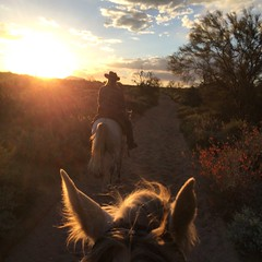 Sunsets in arizona are always spectacular (mamacitaliza143) Tags: sunset horse woman girl friend mare desert riding equestrian trailriding