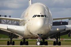 F-WWAB // Etihad Airways // A380-861 // MSN 170 // A6-APB (Martin Fester) Tags: closeup hamburg a380 msn runway etihadairways 170 finkenwerder spotten etihad edhi xfw a380861 fwwab msn170 a6apb xfwedhi