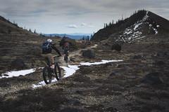 Plains of Abraham (gabriel amadeus) Tags: mountain saint bike forest bicycling volcano washington pacific northwest mountainbike abraham canyon nationalforest mount trail mtb ape helens plains pnw sthelens singletrack