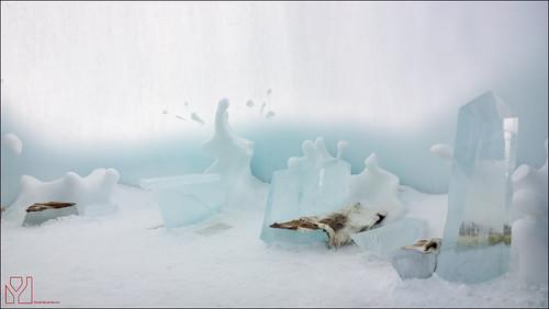 Lapland: Donderdag