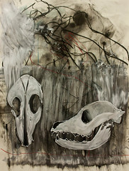 black dog (vglyvgly) Tags: dog abstract skull mixed media paint blind drawing charcoal automatic contour