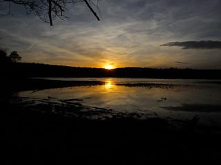 Sunset at Oxbow Lake