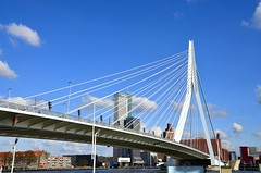 Rotterdam (slavkit) Tags: life park city travel bridge blue sky urban building tower water netherlands dutch horizontal skyline architecture skyscraper river outdoors harbor town office high construction rotterdam europe downtown industrial european day ship cityscape exterior view place erasmus contemporary district steel famous horizon scene aerial structure journey commercial shipping