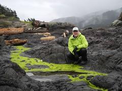 Blending In (becklectic) Tags: green me oregon rick oregoncoast tidepools yachats 2016 20160427dscn5327