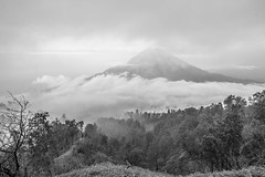 DSC06839 (fatchan711) Tags: indonesia java sony crater ijen a7r