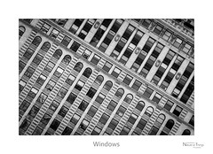 Windows (baldwinm16) Tags: city urban chicago detail building architecture facade omot natureofthingsphotography