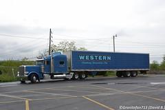 Western Distributing Peterbilt 389 (Trucks, Buses, & Trains by granitefan713) Tags: truck hood peterbilt classy 18wheeler tractortrailer bigrig 389 longhaul largecar longhood peterbilttruck peterbilt389 sleepertractor trucktactor