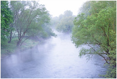 Early morning at the river (na_photographs) Tags: morning trees cold fog nebel fluss kalt bume morgen frhnebel