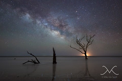 Botany Bay Plantation Milky Way (Mike Ver Sprill - Milky Way Mike) Tags: ocean life new travel portrait sky panorama mist reflection tree art beach sc mike water beautiful night yard forest self way stars dead island photography death bay michael amazing sand nikon long exposure photographer angle outdoor pano south tide explorer low great fine wide salt eerie panoramic best creepy explore driftwood astrophotography plantation midnight jersey carolina astronomy bone serene marsh botany ever magical milky deadwood mv ver based edisto d800 selfie 1424 sprill versprill