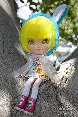 Kdd Málaga 10/06/2016 (Zatannilla) Tags: toy toys doll dolls blonde blythe dolly bunnyhat yellowhair kiwieyes