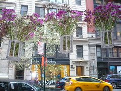 Flowers at Bocca (c_nilsen) Tags: newyorkcity flowers newyork digital restaurant manhattan digitalphoto bocca